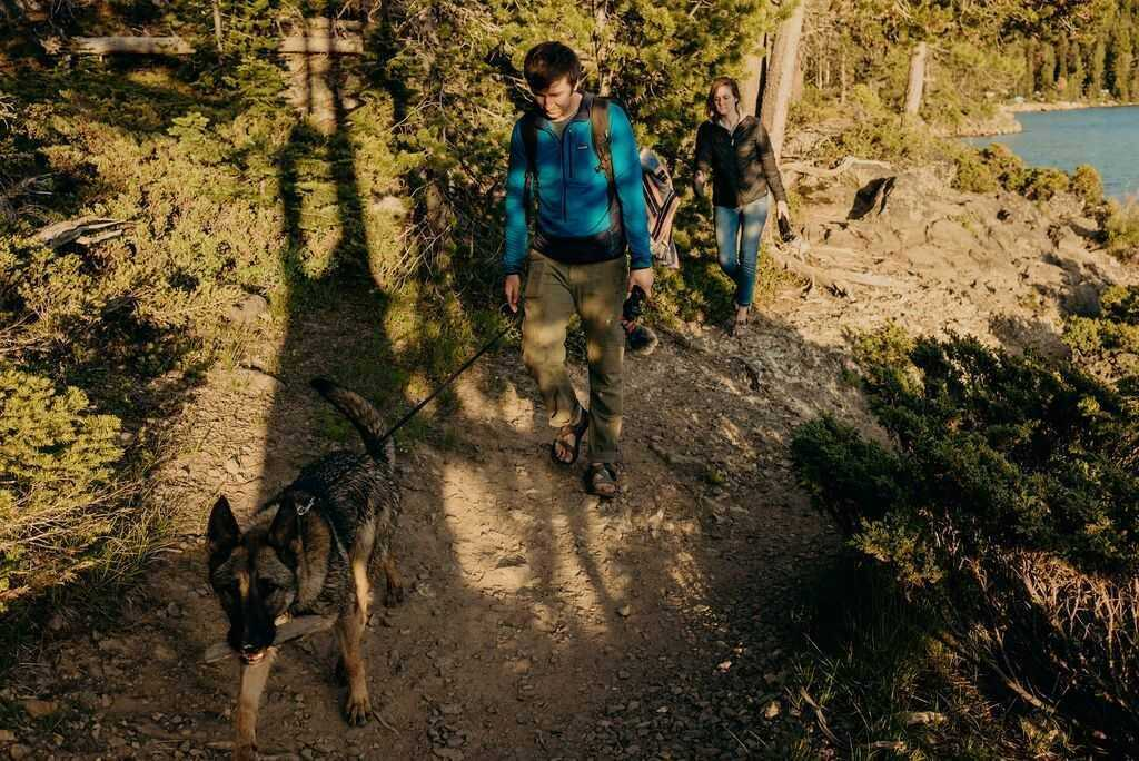 What to bring on a dog hike (packing list included)